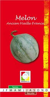 Graines de melon ancien Vieille France