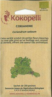 Graines de coriandre
